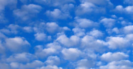 The Sky's the Limit for Cloud-Based Business Management